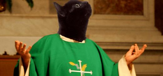 chat histoire quiz
