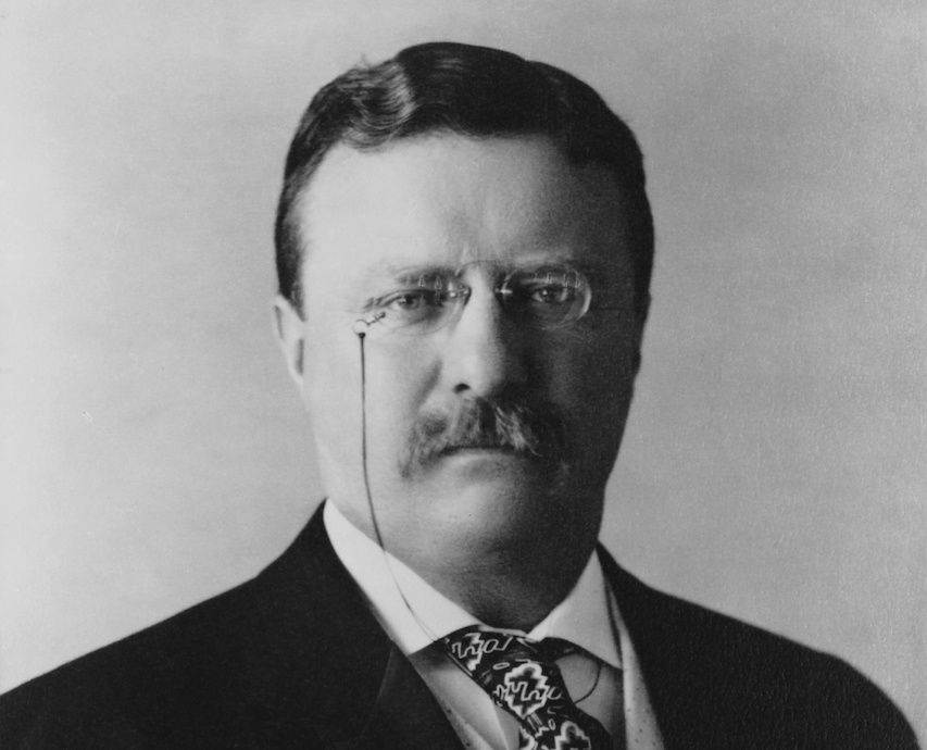 theodor roosevelt gilded age